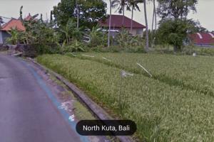 Tanah disewakan dekat Canggu Club