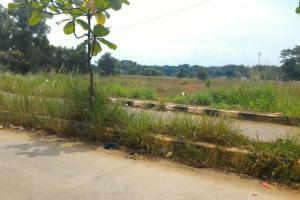 Tanah bagus untuk perumahan besar view danau