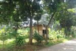 Tanah bagus untuk perumahan di depok