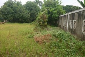 Tanah Kavling Dijual murah dan Lokasi Strategis di Krukut Depok